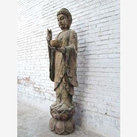 CHINA lebensgrosse Holz Skulptur grossartiger Buddha stehend Raritaet